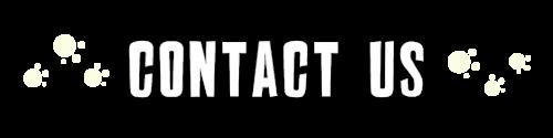 Header_Contact
